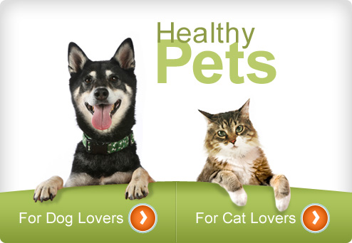 Web MD Healthy Pets